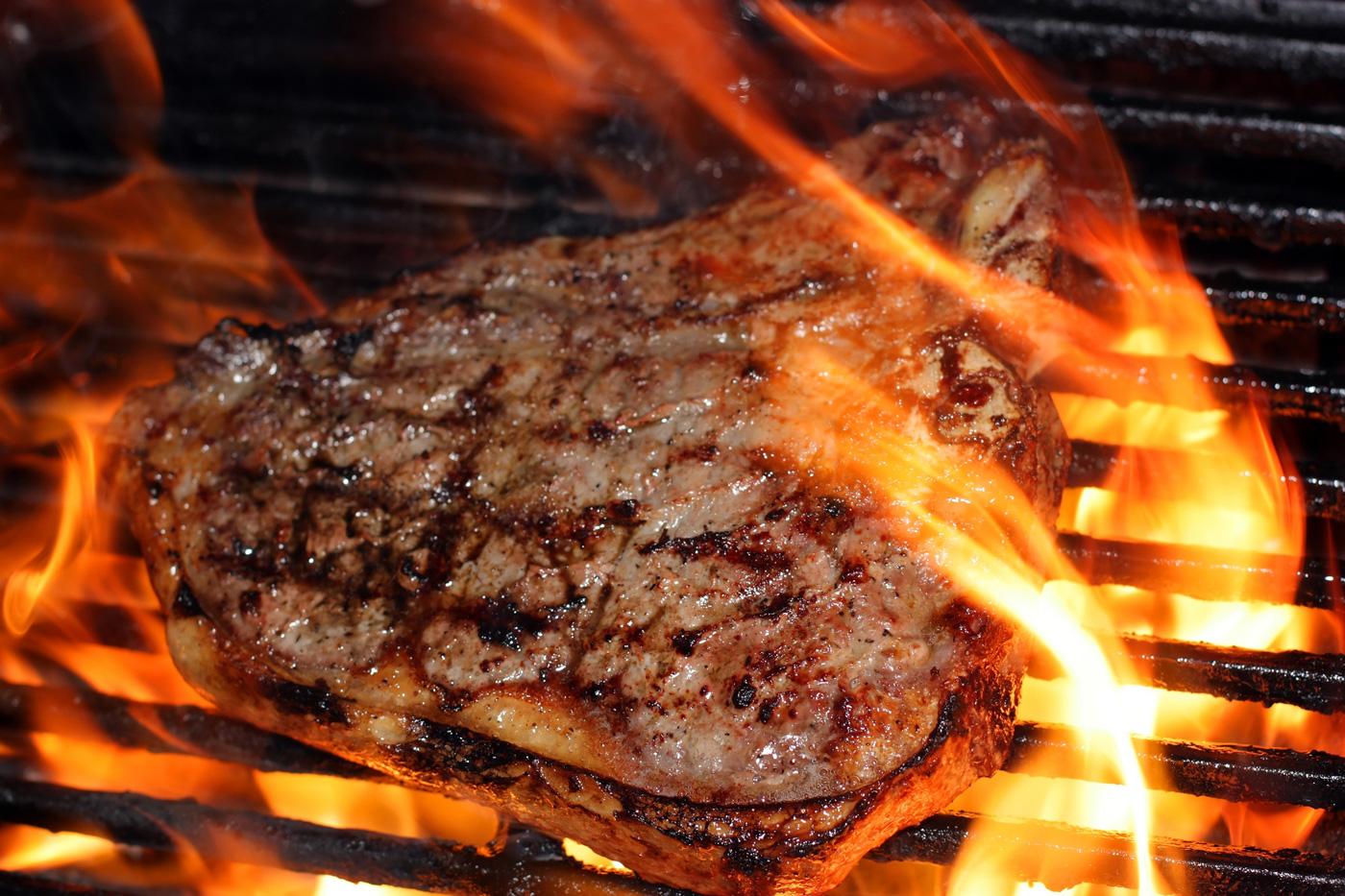 carne di bisonte - brace