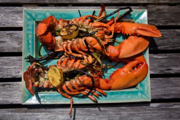 0813_hn_kathy-lobster04