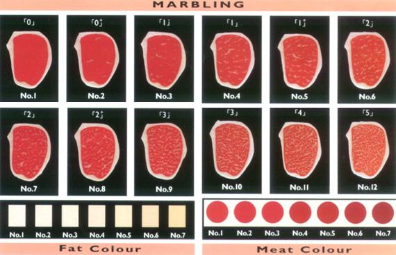 Wagyu cinque cose da sapere sul manzo giapponese - Scale di colore ...