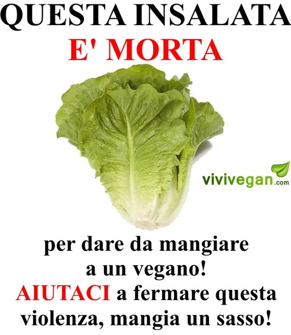 ironia vegan