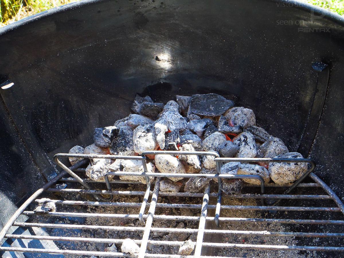 barbecue di primavera - carbonella