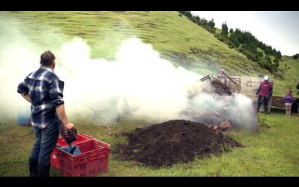 hangi maori barbecue